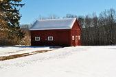 Snowy Driveway in a Scenic Winter Scene — Stock Photo