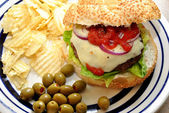 Picnic Burger with the Works — Stock Photo