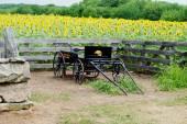 Oude boerderij wagen voor een veld — Stockfoto