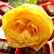 Yellow Rose on a Box of Candy — Stock Photo #61879329