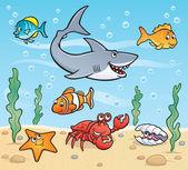 Sea Life Underwater Scene — Stock Photo