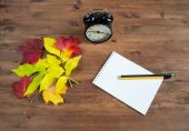Clock alarm, notebook, pencil and yellow leaves — Stock Photo