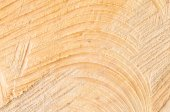 Cut tree trunk texture background  — Стоковое фото