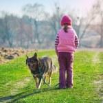 Girl walking with dog — Stock Photo #54521793