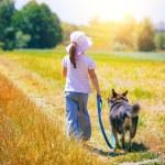 Girl walking with dog — Stock Photo #54522031