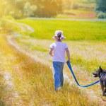 Girl walking with dog — Stock Photo #54522279