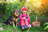 Happy little girl with dog — Stock Photo