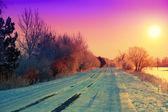 Winter road in field — Stock Photo