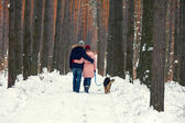 Couple with dog walking in the  forest — Stock Photo
