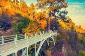 Bridge in botanical garden in Tbilisi — Stock Photo