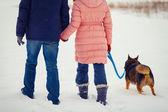 Giovane coppia cammina con il cane — Foto Stock