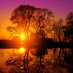Purple lake sunset — Stock Photo #71396071