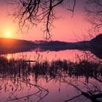 Magical sunrise over lake — Stock Photo #72228125