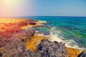 Igneous sea coast — Stock Photo