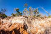Land erosion — Stock Photo
