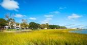 Charleston park — Stockfoto