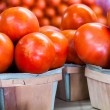 Fresh Tomatoes — Stock Photo #58314097