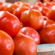 Fresh Tomatoes — Stock Photo #58314179