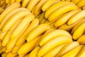 Banány — Stock fotografie