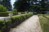 Garden of the Infanta. — Foto de Stock