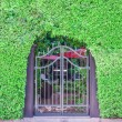 Classical design black wrought iron gate in a beautiful green ga — Stock Photo #51877461