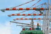 Container Ship in terminal working with shore crane at dock — Stock Photo