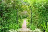Decorative arched iron gateway to a garden — Stock Photo