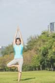 """Asian woman make yoga call """"Tree Pose"""" at park — Stock Photo"""
