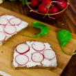 Grain bread with soft cheese and radish on wooden board (selective focus) — Stock Photo #51834267