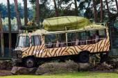 Colorful decorations Safari Park — Stock Photo