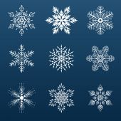 Set of white snowflakes for decorating — Stock Vector