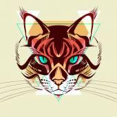 Cat. Fashion illustration — Stock Vector