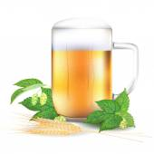 Glass of beer, hops and barley - isolated on white background — Stock Vector