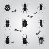 Bugs and beetles icons set eps10 — Stock Vector