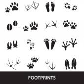 Basic animal footprints set eps10 — Stock Vector