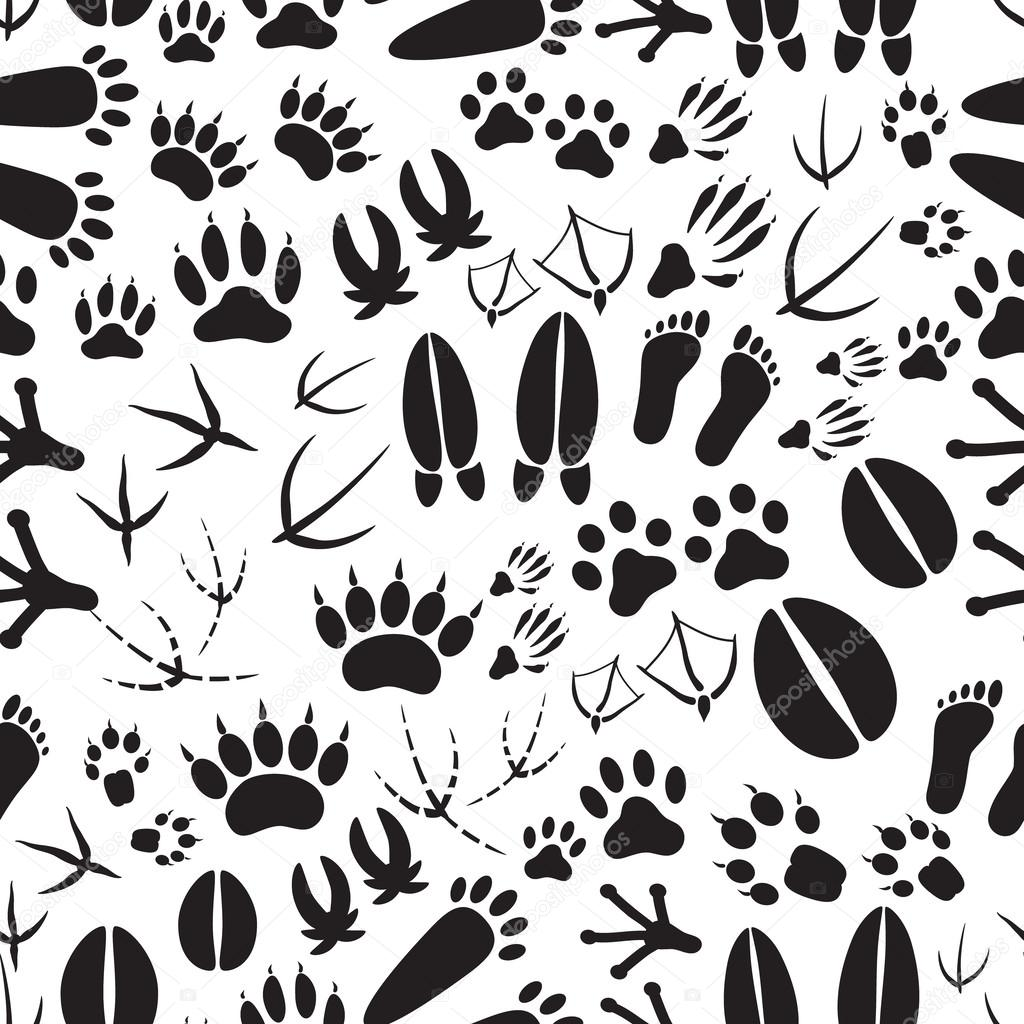 Animal foot prints patterns - photo#22