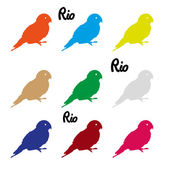 Colors parrots icons symbol and Rio text eps10 — Stock Vector