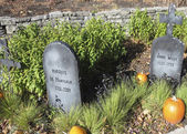 Halloween history setting showing the Marquis de Montcalm and James Wolfe gravestones, the two military people that fought in 1759 in Quebec city — Zdjęcie stockowe