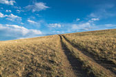 Dirt road  leaving to the horizon — Stockfoto