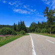 Black forest mountain road — Stock Photo #74569639