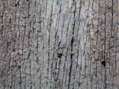 Old piece of weathered wood — Stock fotografie