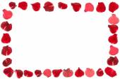 Rose petals frame isolated  — Stock Photo