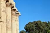 Greek columns in Selinunte — Stock Photo