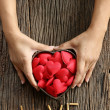 Woman hands holding red heart shaped — Stock Photo #56207965