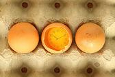 Eggs food time. — Stock fotografie