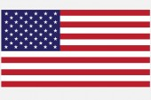 United state of America flang. — 图库矢量图片