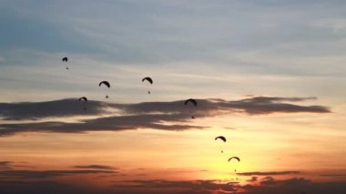 Set collection montage, Group of parachute or paramotor fly in sunset, sport activity, high definition clip, Thailand. — Vídeo de stock