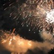 Set collection montage, Beautiful celebration fireworks, HD 1920x1080 clip. — Stock Video #59403005