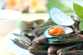 Close up mussels — Stock Photo