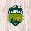 Camping — Stock Vector #54998929